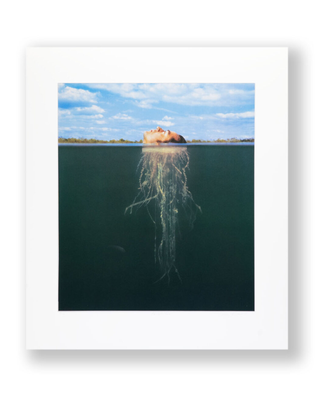 JELLYFISH PRINT BY STORM THORGERSON
