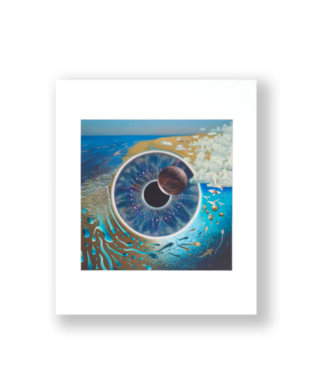 PINK FLOYD PULSE PRINT SIGNED BY ARTIST STORM THORGERSON